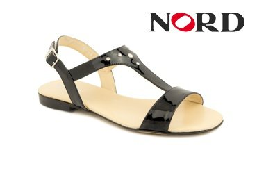 Nord 1560 Elite