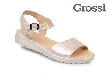 Grossi 631-19