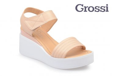 Grossi 698-19