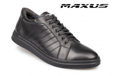 Maxus 203 big