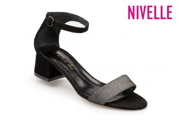Nivelle 1854