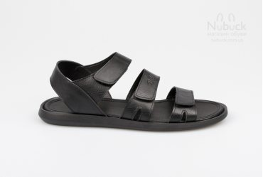 Мужские сандалии Rodds Poipu