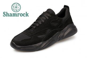 Shamrock 10.100 black