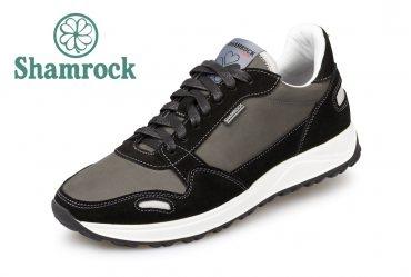 Shamrock 10.104 black