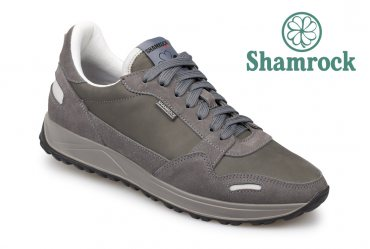 Shamrock 10.104 gray