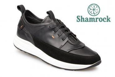 Shamrock 10.106 black