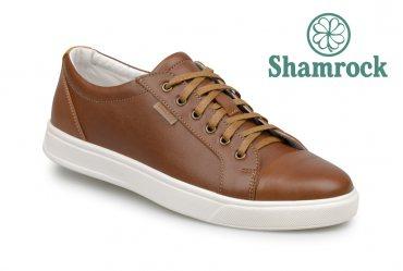 Shamrock 10.113 brown