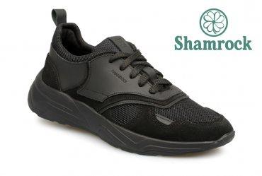 Shamrock 10.114