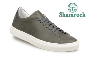 Shamrock 10.122 grey