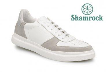 Shamrock 10.123 grey
