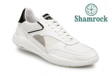 Shamrock 10.124 white