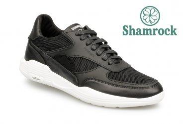 Shamrock 10.124 ws