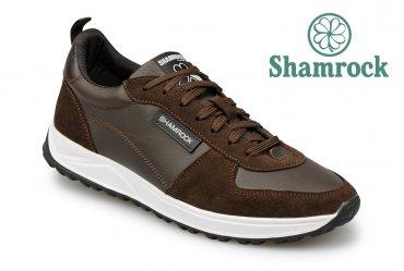 Shamrock 10.126 brown
