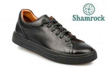 Shamrock 10.129
