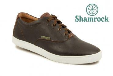 Shamrock 10.14 brown