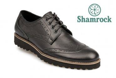 Shamrock 10.23
