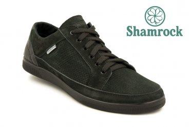 Shamrock 10.32