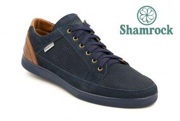 Shamrock 10.32 blue