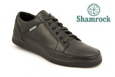 Shamrock 10.32d