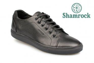 Shamrock 10.34