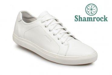 Shamrock 10.34 white