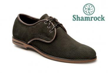 Shamrock 10.37