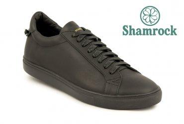 Shamrock 10.43