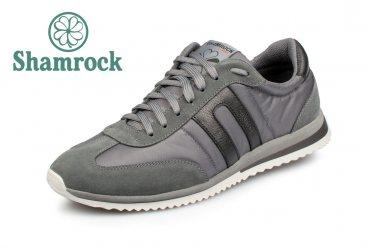 Shamrock 10.45 gray