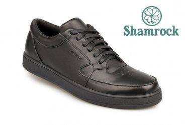 Shamrock 10.49