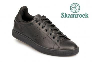 Shamrock 10.53