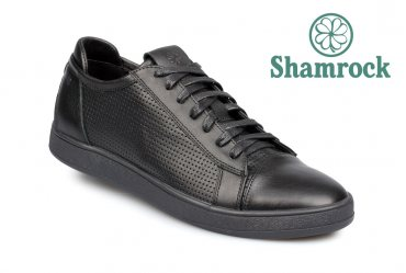 Shamrock 10.56