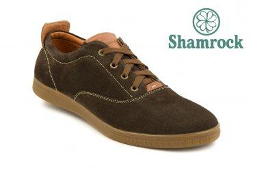 Shamrock 10.5 brs
