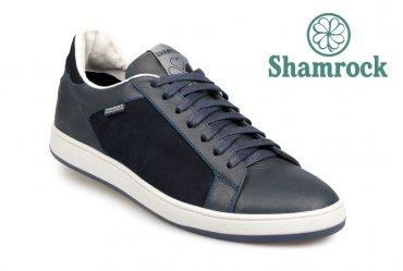 Shamrock 10.62 blue