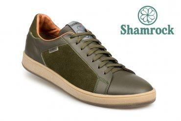 Shamrock 10.62 olive