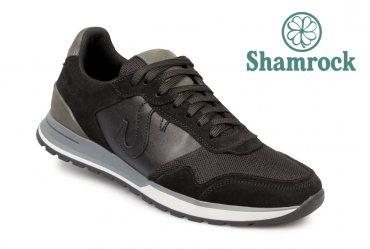 Shamrock 10.64 black