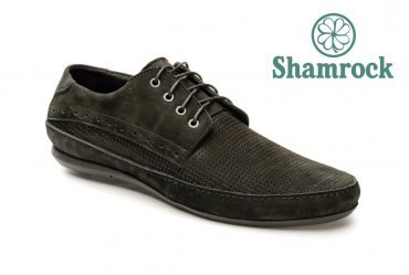 Shamrock 10.6 p