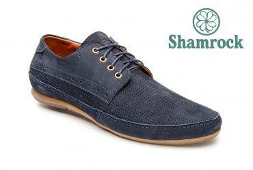 Shamrock 10.6 p blue