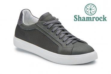 Shamrock 10.71 gray