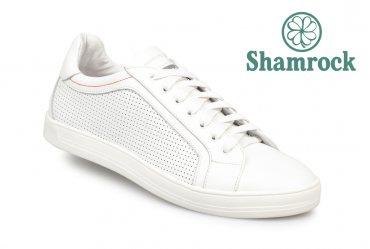 Shamrock 10.71 white