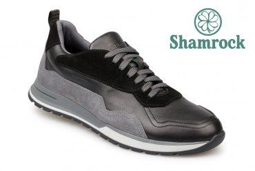 Shamrock 10.82