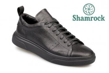 Shamrock 10.85