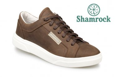 Shamrock 10.89 brown