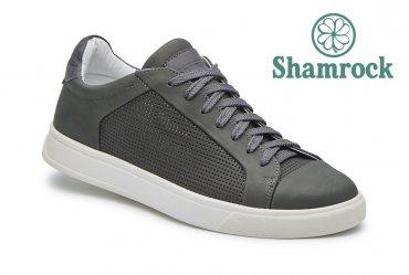 Shamrock 10.90 gray