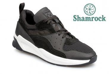 Shamrock 10.92 black
