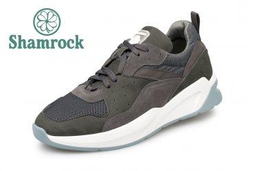Shamrock 10.92 grey
