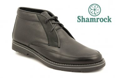 Shamrock 20.1