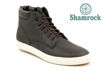 Shamrock 20.15