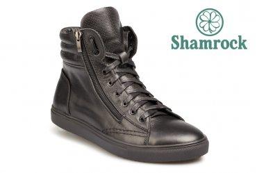 Shamrock 20.18