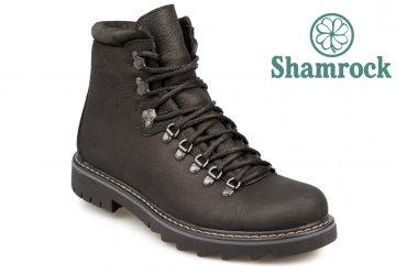 Shamrock 20.19