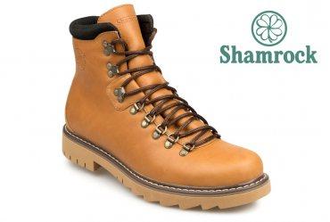 Shamrock 20.19 ruf